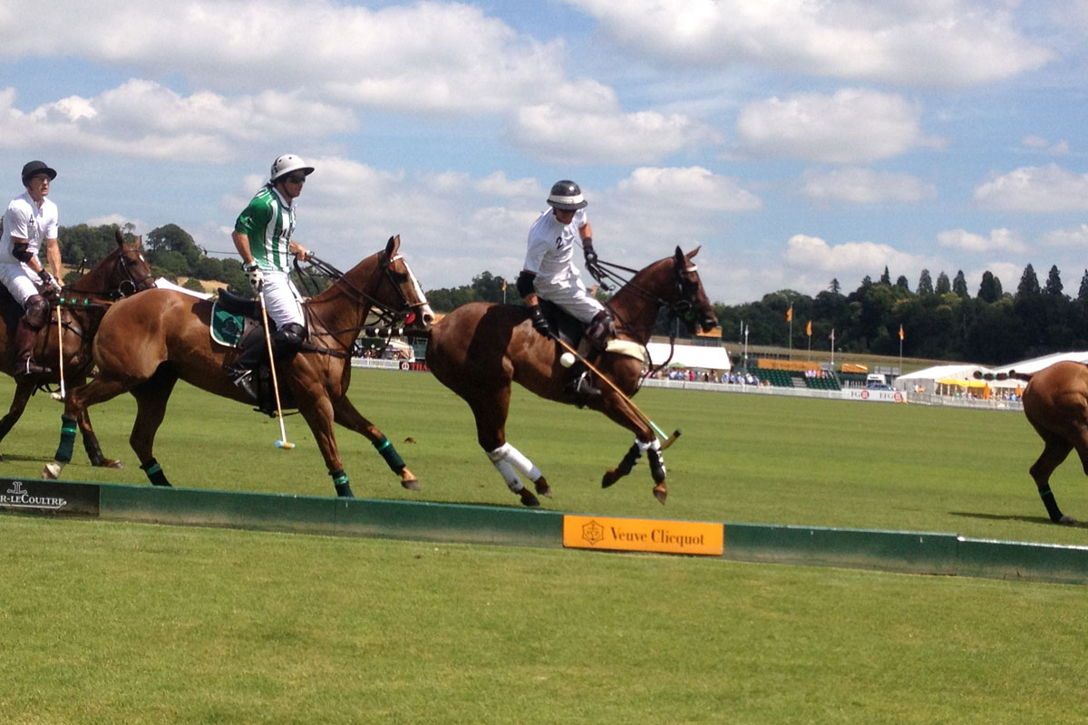 High speed polo action at the Gold Cup Final